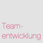 navi-gruppen-teamentwick